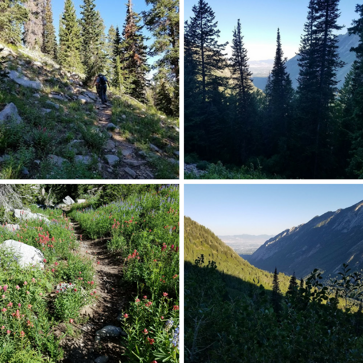 Maybird Gulch Trail - A Trail Less Traveled