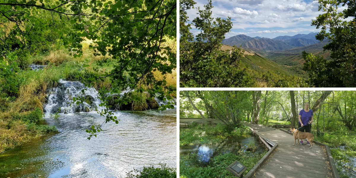 Cascade-Springs-