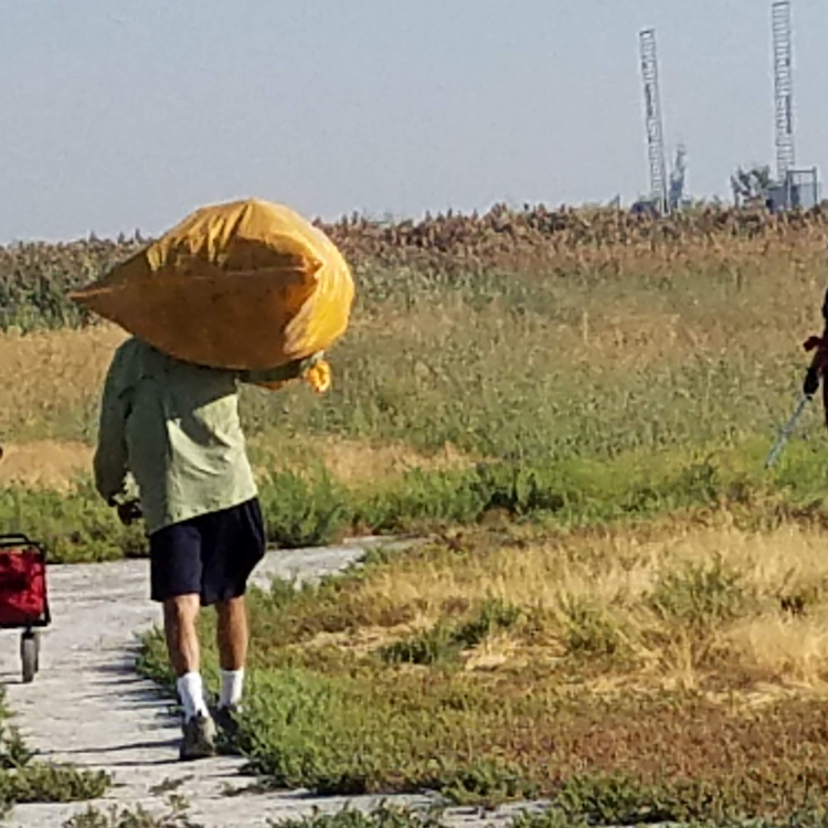 carrying-bag-litter-Antelope-Island-Clean-Up