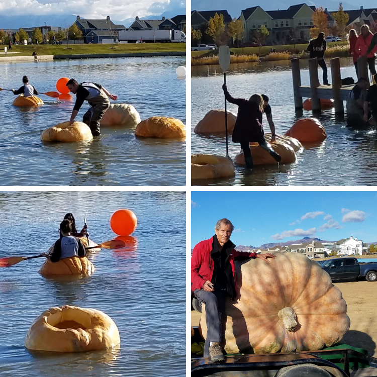 Pumpkin-Regatta