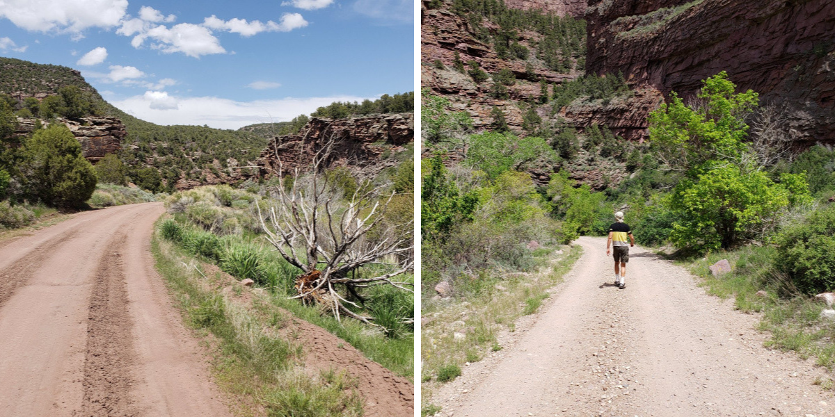 Crouse.Canyon.dirt.road
